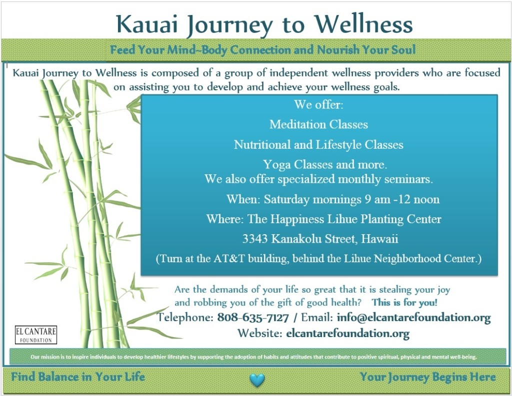 Kauai Journey to Wellness FLYER2